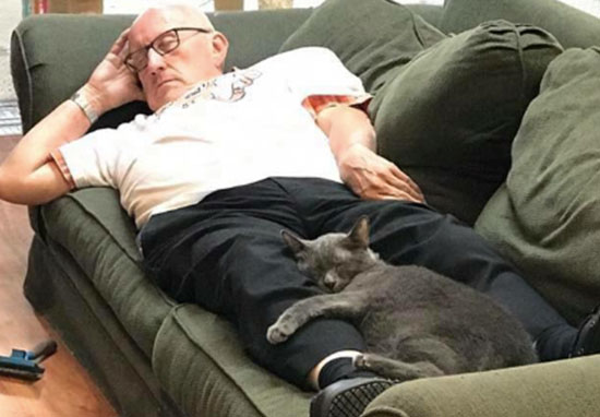 Man naps with cats