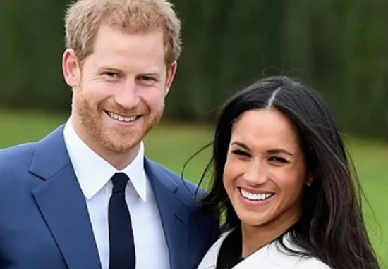 Prince Harry and Meghan have spoken out about their pregnancy.