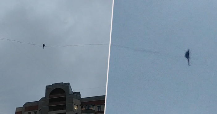 Man falls from tightrope.