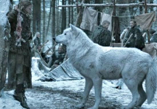 Ghost Is Definitely Returning For Game Of Thrones Season 8