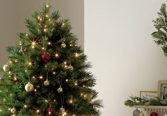 Half Christmas.Argos Are Selling Half Christmas Trees For People With