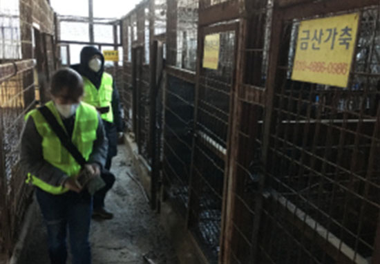 empty cages in slaughterhouse