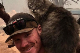 Cat rescued from California fires