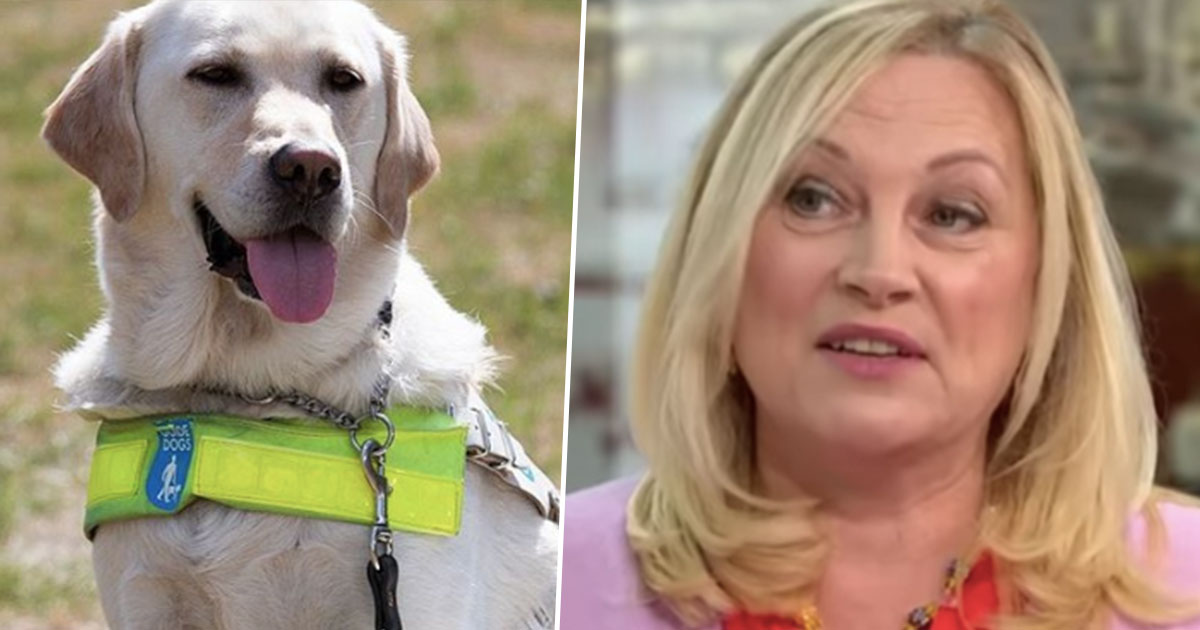 Animal Rights Activist Wants To Abolish Guide Dogs Because They Don't Consent To Work