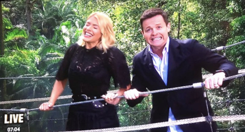 Dec Makes Hilarious Opening Joke About Holly Willoughby On I'm A Celebrity