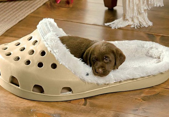 Shoe shaped pet bed