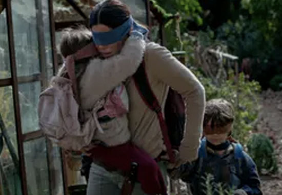 Bird Box sandra bullock blindfold
