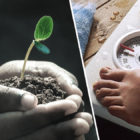 Eating A Spoonful Of Soil A Day Could 'Cure Obesity'