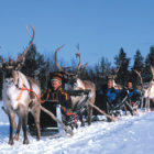 Third Of Brits Think Lapland Is A Fictional Place, Study Finds