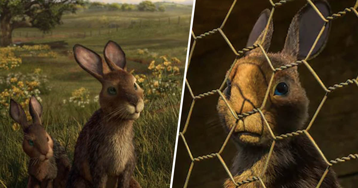 watership down bbc