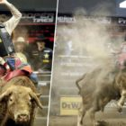 Man Killed After 1700lb Bull Stomps On His Chest During Rodeo