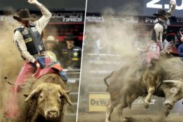 Bull rider dies in Denver after being stomped on.