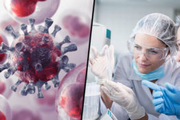 Scientists claim they've found a cure for cancer
