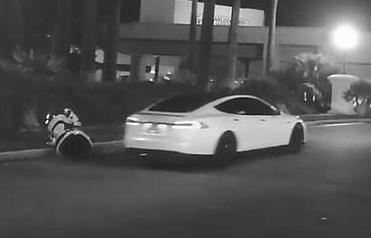 Robot knocked over by driverless Tesla