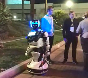 Robot killed by self driving car