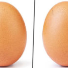The World-Famous Instagram Egg Is Starting To Crack