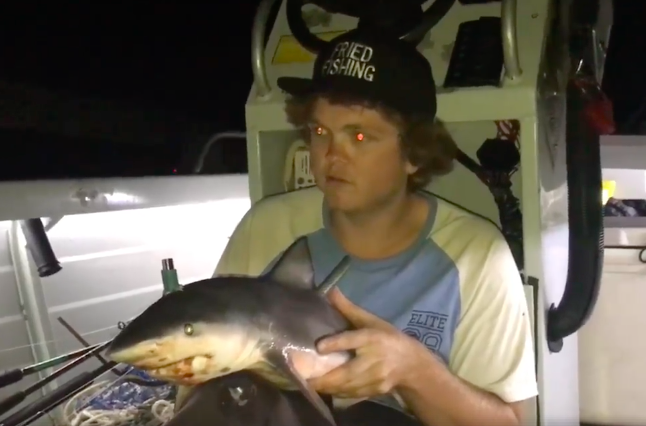 Man who made bong out of baby shark defends video