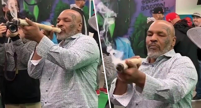 mike tyson smoking a joint