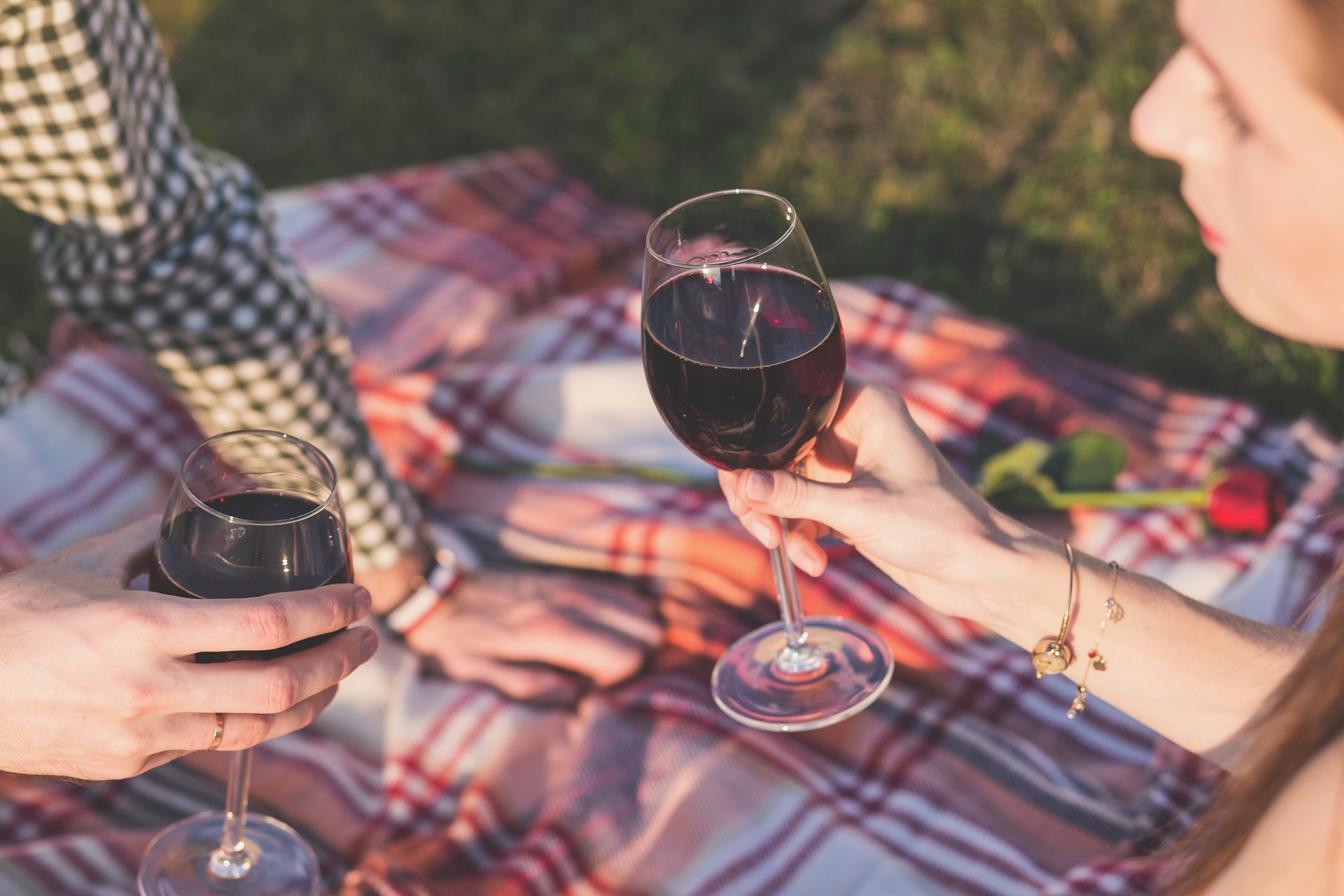 Picnic date with wine
