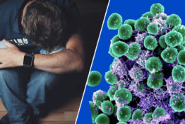 gut bacteria could be linked to depression