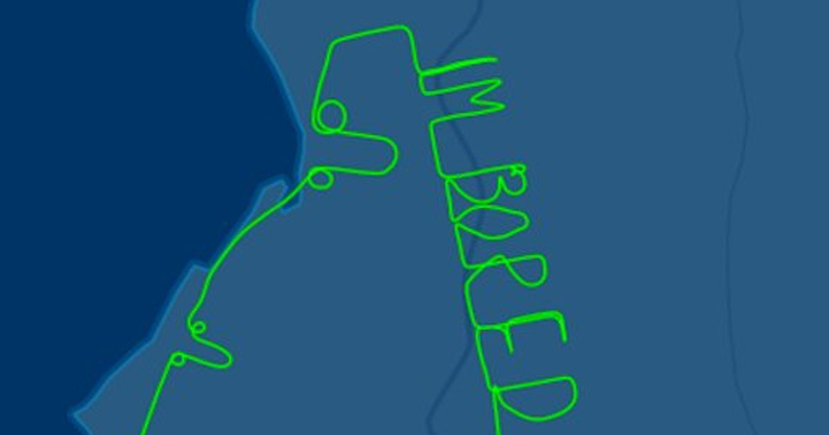 Pilot draws 'I'm bored' on a test flight