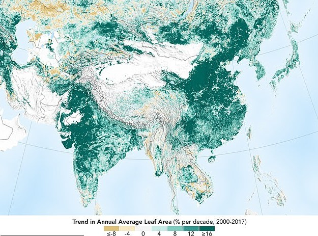 map of vegetation in asia