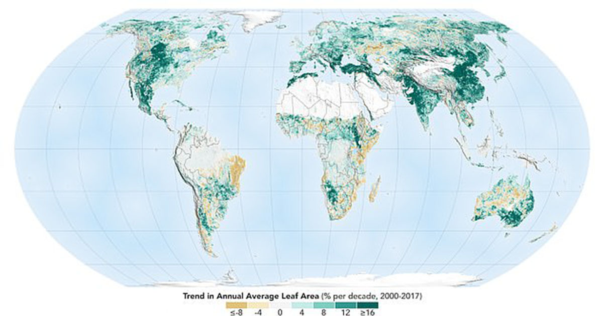 map of vegetation on earth