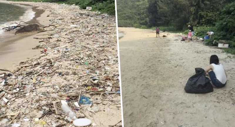 before and after beach cleanup