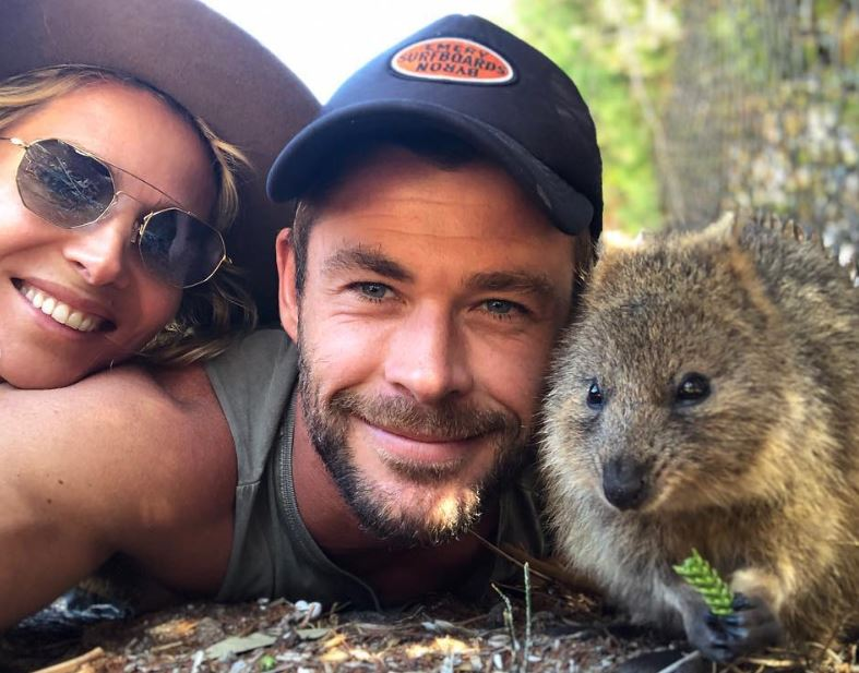 Chris Hemsworth hangs out with quokkas
