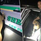 Dog Separated From Family Waited By Police Car For Help