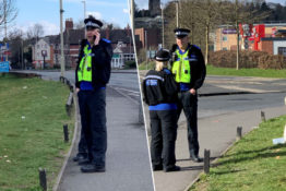 Hot Fuzz becomes reality as police officers try to catch swan