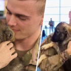 Soldier Reunited With Puppy He Adopted During Deployment