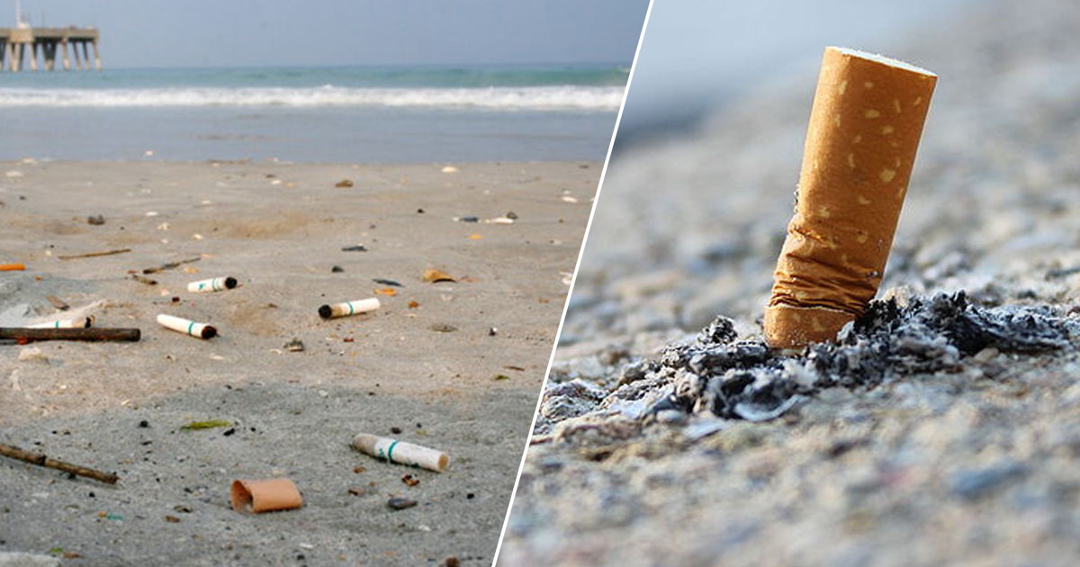 cigarette butts on beach, largest source of trash in the oceans