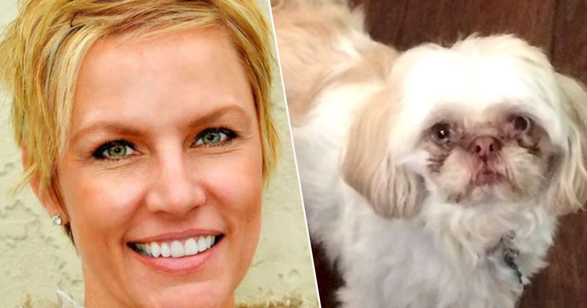 Ex wife wanted in stabbing of shih tzu