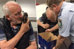 homeless man chris being reunited with his pet rat lucy