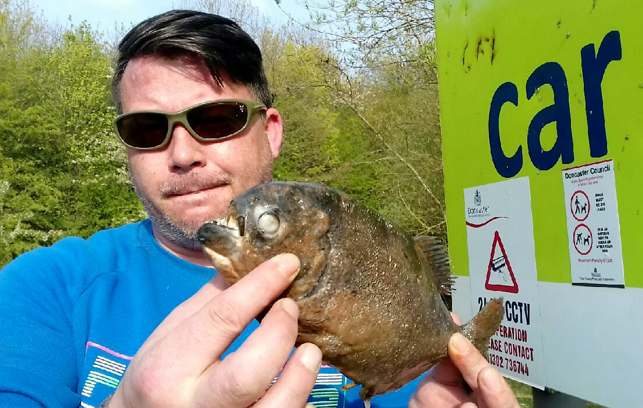 Piranhas discovered in Yorkshire lake