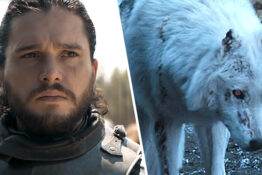 Ghost Jon Snow