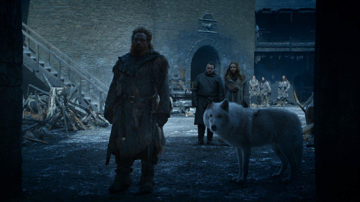 ghost the direwolf with one ear in game of thrones