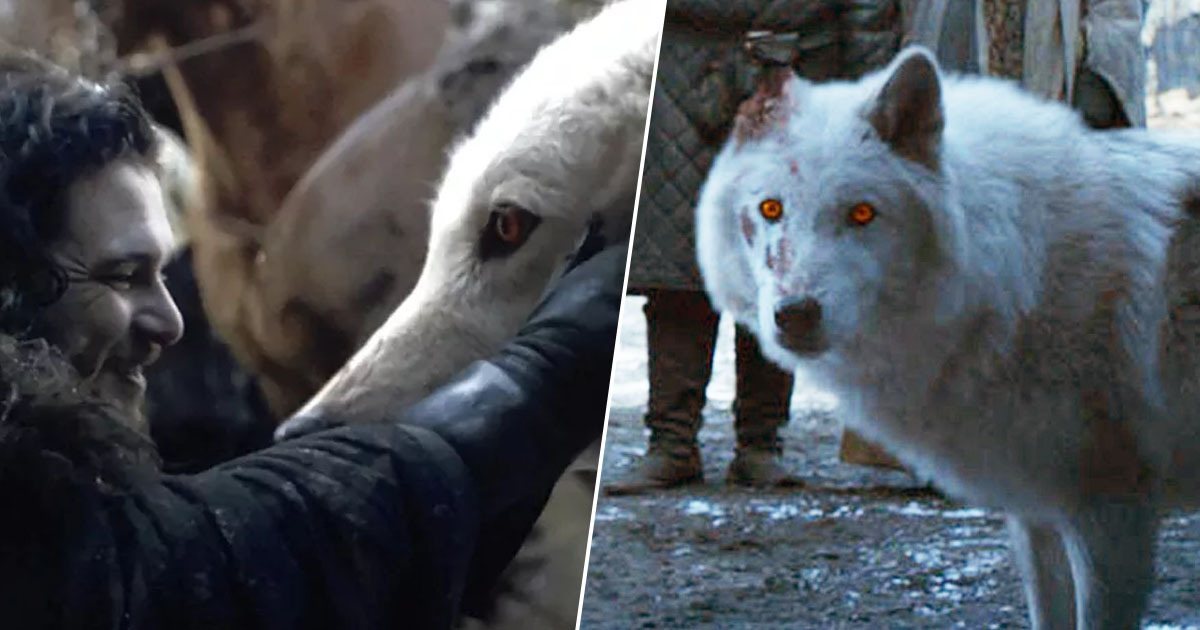 jon snow and his direwolf ghost in game of thrones