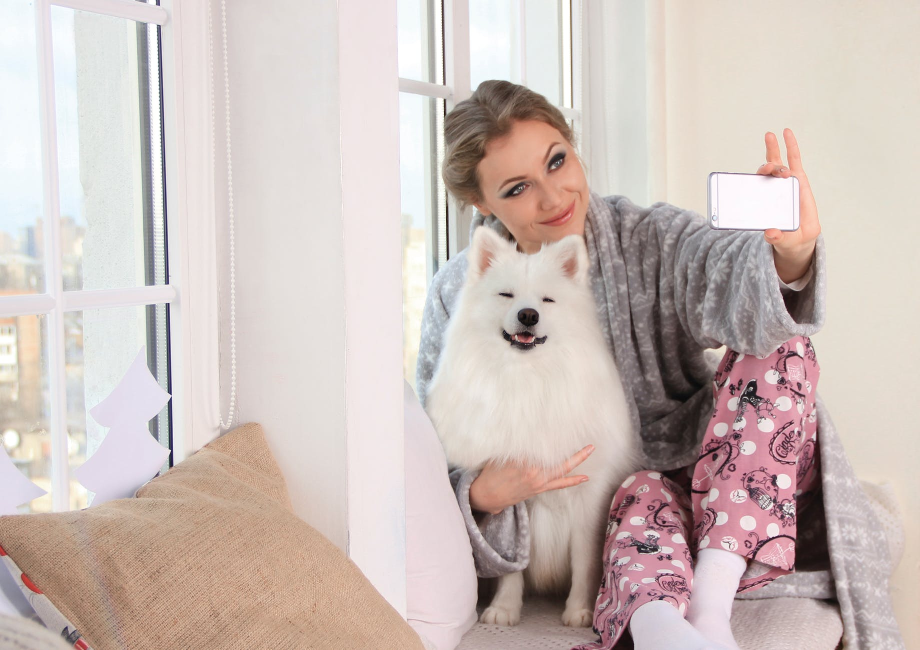 Pet Owners Admit To Giving Dogs Protein Shakes To Make Them More Instagrammable