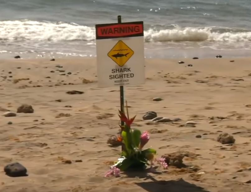 Flowers mourn man who died after being mauled by shark