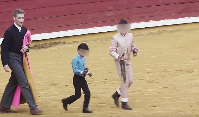 Horrifying images of calves being tortured by trainee bullfighters.