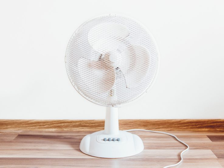 Fan in bedroom