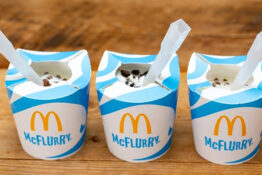 Mcflurry packaging