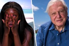 Yewande trash talks david attenborough
