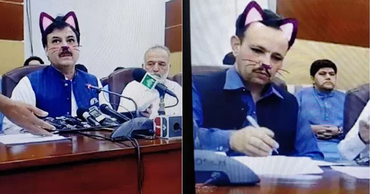 Government uses cat filter