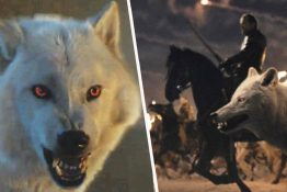 Scene with 50 direwolves cut from Game of Thrones.