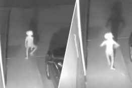 Creature which resembles Dobby captured on CCTV.