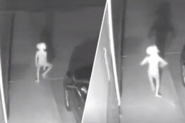Woman spots creature on CCTV