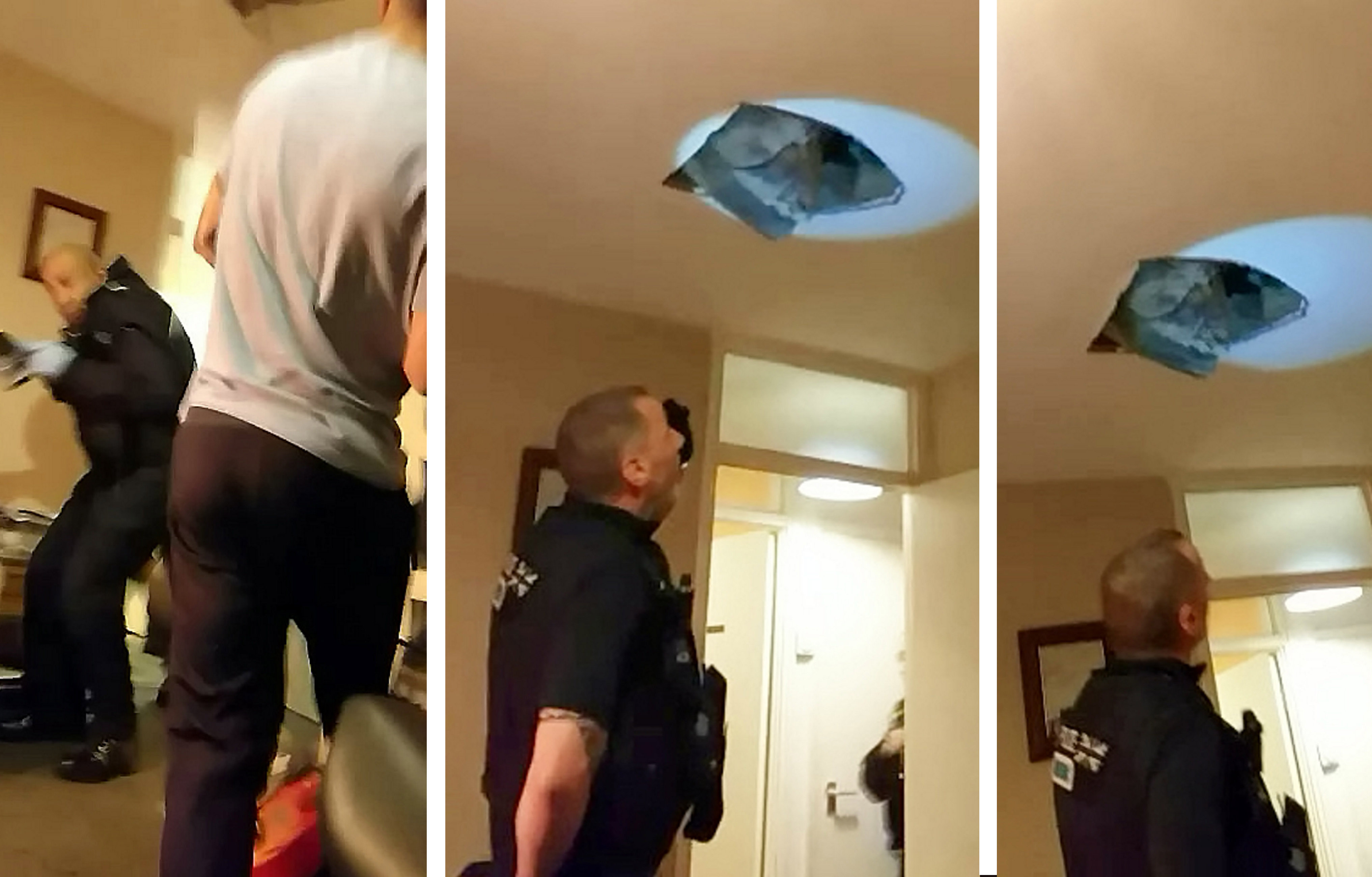 suspect falls through roof